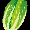 白菜の保存方法、長持ちさせるコツとは?