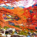 香嵐渓の紅葉の見ごろはいつ?渋滞具合やおすすめ駐車場も!