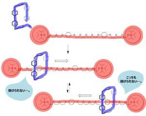 分子機械 ロタキサン