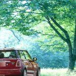 自動車税の納税額確認には早見表が便利。納税通知書は5月初旬に送付されます。