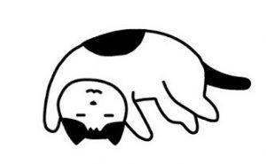 20160811_235316 猫
