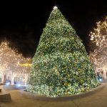 クリスマスプレゼント!付き合う前の男性へ贈るプレゼント5選