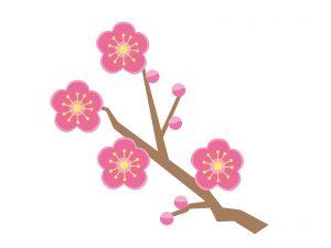 節分 豆まき 梅の花
