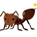 ヒアリだけじゃない!マダニ、セアカゴケグモ、蚊(デング熱)どれが一番危険なの?(まとめ)
